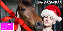 horse and hunk banner 1